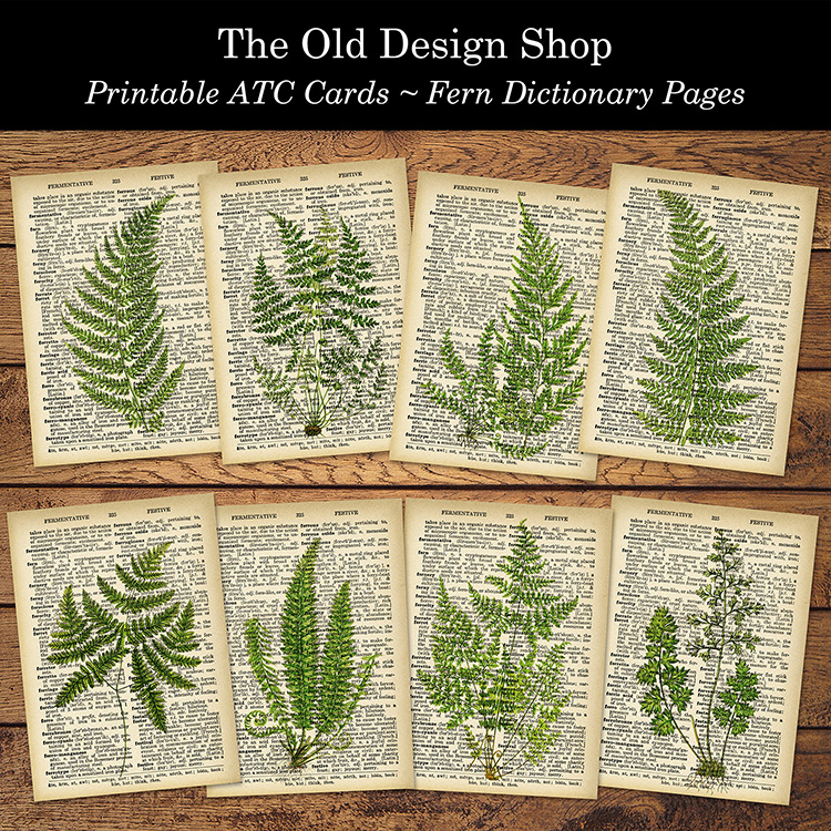 printable ATC cards fern dictionary pages