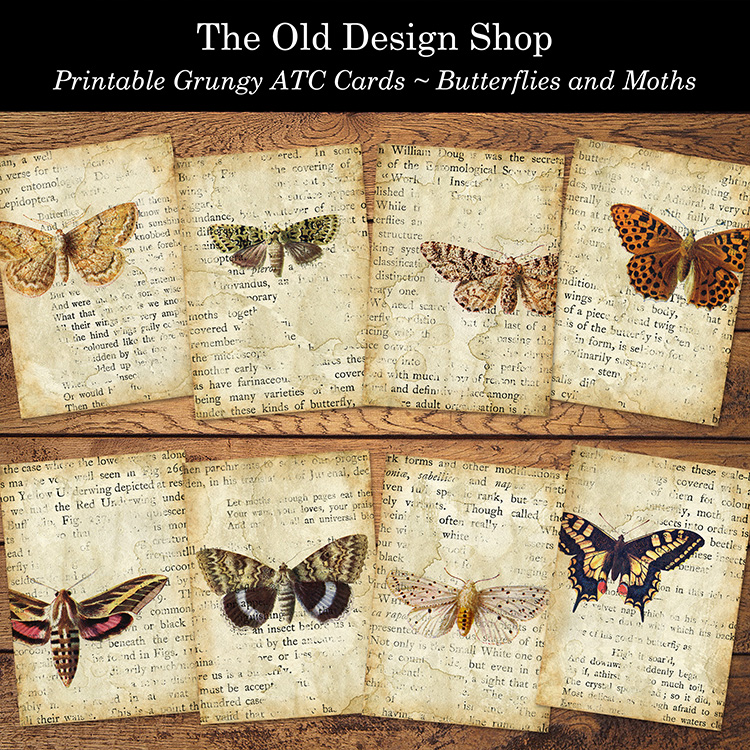 printable butterflies and moths grunge ATC cards