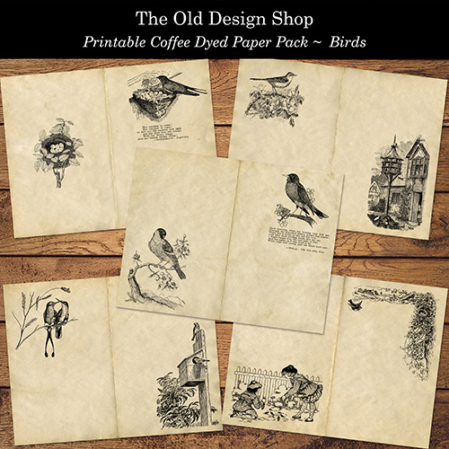 printable coffee dyed paper pack birds