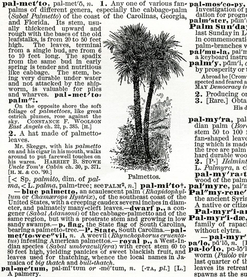 antique dictionary palmetto